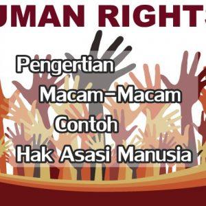 Hak Asasi Manusia HAM