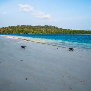 Destinasi Wisata Pantai di Jawa Barat dan Banten Yang Sayang Untuk Dilewatkan!