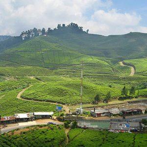 Tempat Wisata Alam Bogor Paling Oke yang Wajib Dikunjungi